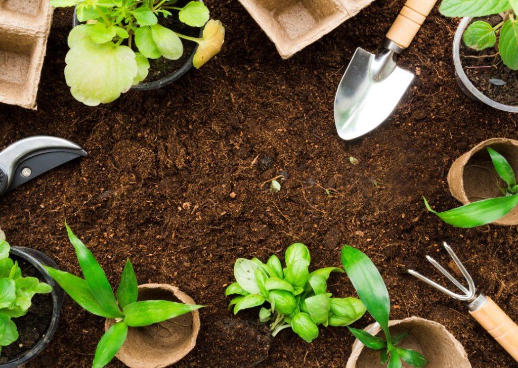 do gardening to beat the stress
